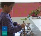 AMI Montessori Diploma Childrens House 3-6 Modif RO